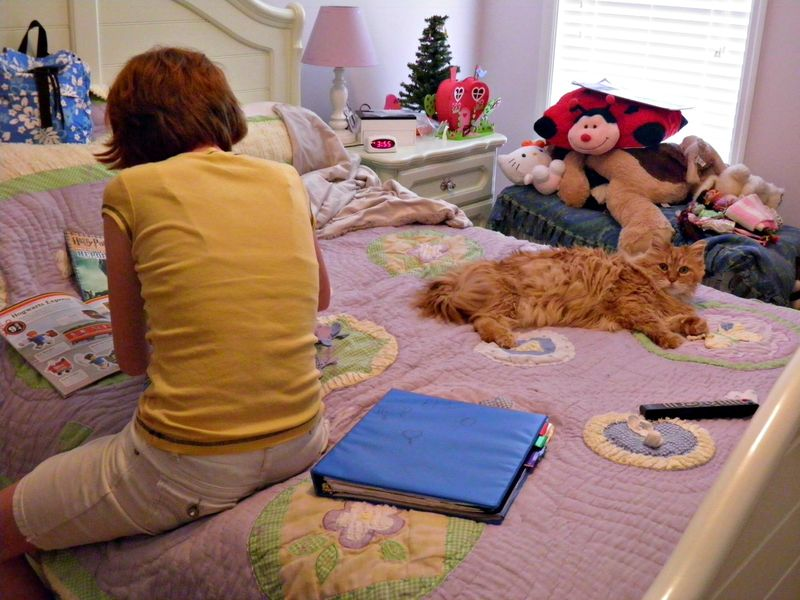 Cat nap w Anna