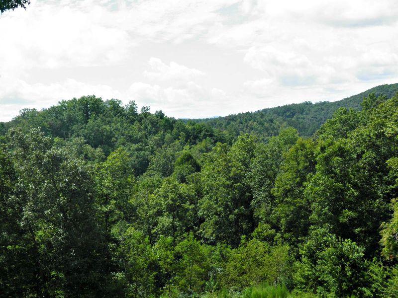 Mountainview1