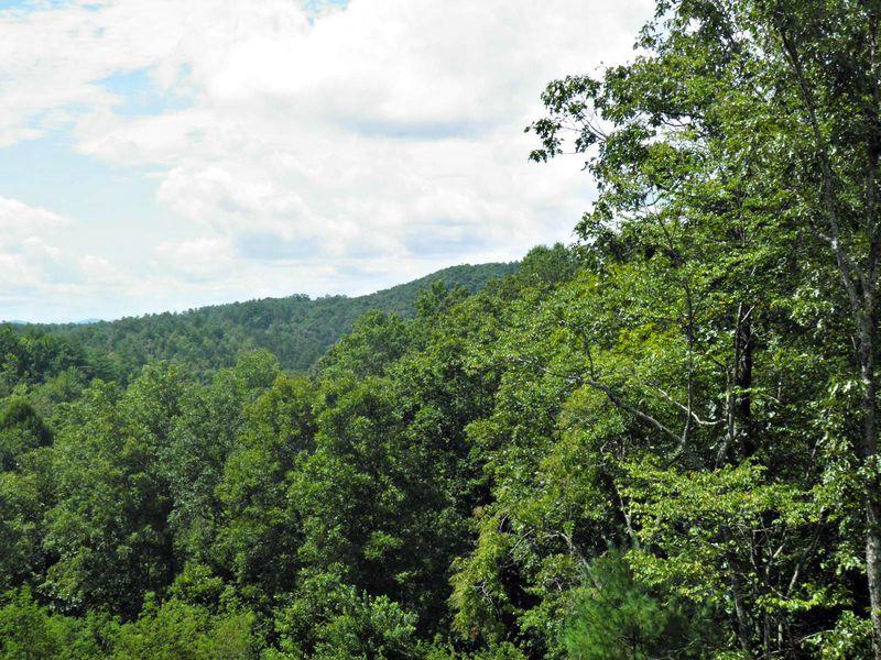 Mountainview2